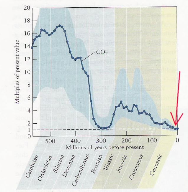 Atmospheric CO2 is currently at near its lowest level ever on geological timescales.